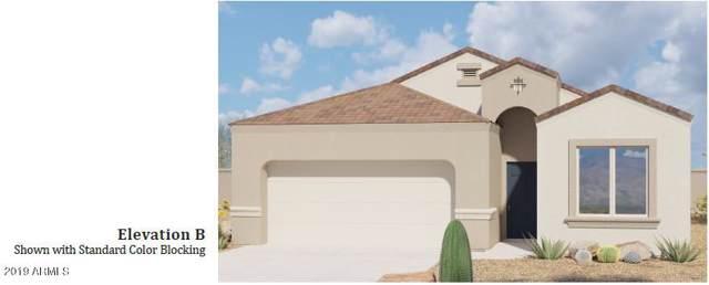 31026 W Mitchell Drive, Buckeye, AZ 85396 (MLS #5973040) :: The Daniel Montez Real Estate Group