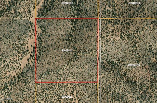 Lots 713, 715,716 Greenview Ranches, Seligman, AZ 86337 (MLS #5973099) :: Devor Real Estate Associates