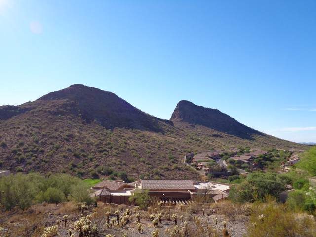 9804 N Talon Trail, Fountain Hills, AZ 85268 (MLS #5973322) :: The Helping Hands Team