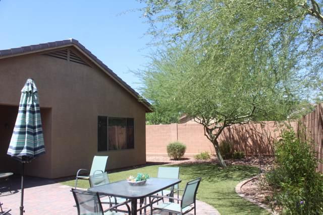 40131 N Thunder Hills Court, Anthem, AZ 85086 (MLS #5973450) :: The Daniel Montez Real Estate Group