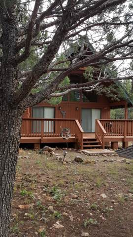 3933 Starlight Drive, Happy Jack, AZ 86024 (MLS #5973507) :: The Pete Dijkstra Team