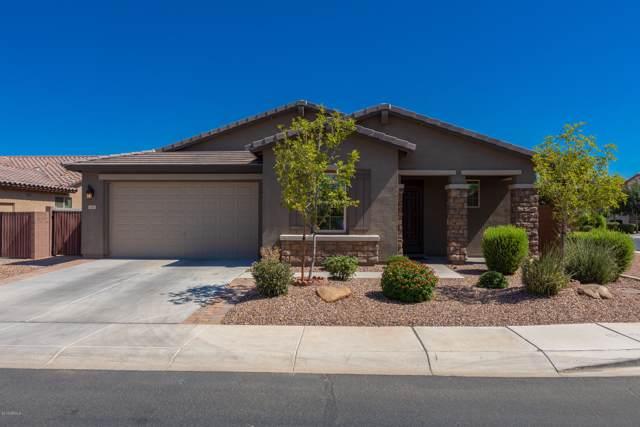 1060 W Fir Tree Road, San Tan Valley, AZ 85140 (MLS #5973546) :: Revelation Real Estate