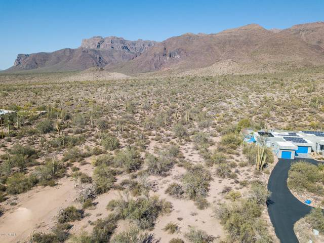 00 E Open Sky Drive, Gold Canyon, AZ 85118 (MLS #5973584) :: Brett Tanner Home Selling Team
