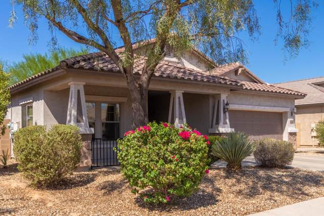 5830 W Pedro Lane, Laveen, AZ 85339 (MLS #5973750) :: Openshaw Real Estate Group in partnership with The Jesse Herfel Real Estate Group