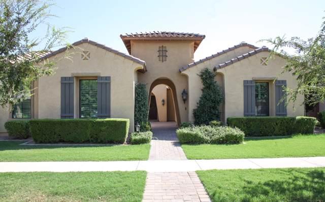 2941 E Los Altos Court, Gilbert, AZ 85297 (MLS #5973937) :: Revelation Real Estate