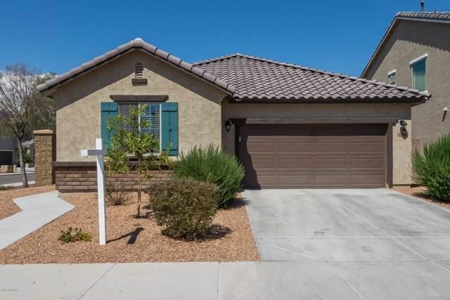 12064 W Rowel Road, Peoria, AZ 85383 (MLS #5974109) :: Yost Realty Group at RE/MAX Casa Grande
