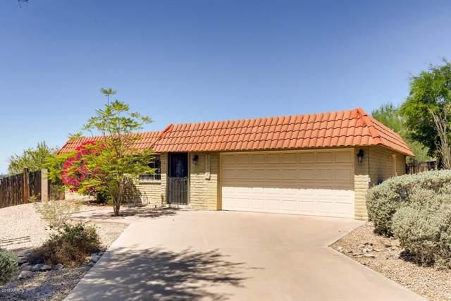 11220 N 15TH Avenue, Phoenix, AZ 85029 (MLS #5974734) :: Occasio Realty