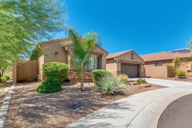 23914 N 23RD Way, Phoenix, AZ 85024 (MLS #5974759) :: Revelation Real Estate