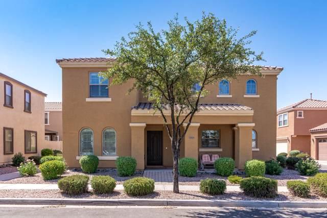3069 E Harrison Street E, Gilbert, AZ 85295 (MLS #5975001) :: Revelation Real Estate