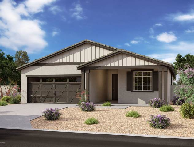 13204 W Redstone Drive, Peoria, AZ 85383 (MLS #5975278) :: Yost Realty Group at RE/MAX Casa Grande