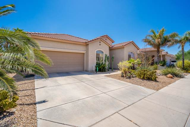 10317 W Superior Avenue, Tolleson, AZ 85353 (MLS #5975591) :: Occasio Realty