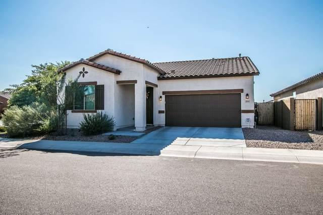 254 N Piedra Street, Mesa, AZ 85207 (MLS #5975713) :: The Laughton Team