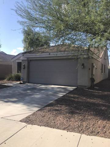 11324 W Brittlewood Drive, Phoenix, AZ 85037 (MLS #5975989) :: Occasio Realty