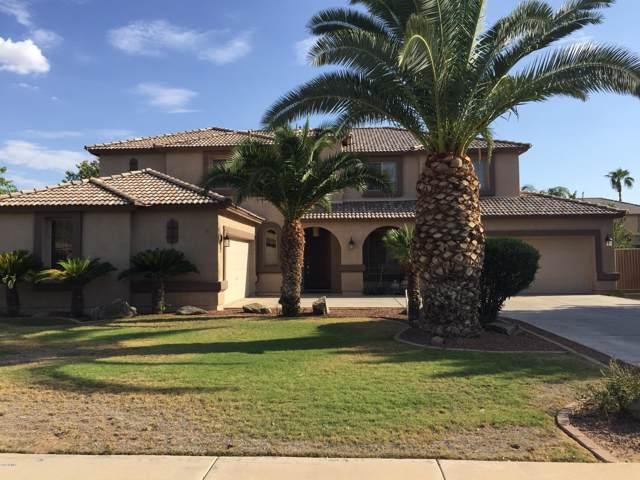 359 E Elgin Street, Gilbert, AZ 85295 (MLS #5975998) :: Revelation Real Estate