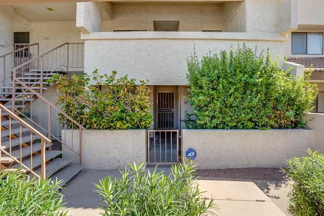 11026 N 28TH Drive #60, Phoenix, AZ 85029 (MLS #5976027) :: Riddle Realty Group - Keller Williams Arizona Realty