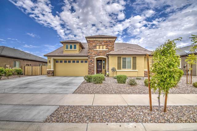 22282 E Munoz Court, Queen Creek, AZ 85142 (MLS #5976046) :: Revelation Real Estate