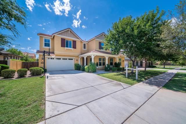 3653 E Comstock Drive, Gilbert, AZ 85296 (MLS #5976312) :: Revelation Real Estate