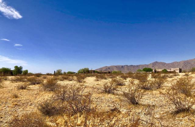 19224 W Alice Court, Waddell, AZ 85355 (MLS #5976366) :: Arizona Home Group