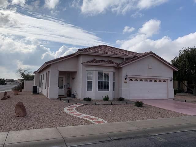 11663 W Hawk Court, Surprise, AZ 85378 (MLS #5976596) :: Revelation Real Estate