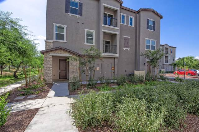2327 E Hidalgo Avenue, Phoenix, AZ 85040 (MLS #5976619) :: Revelation Real Estate