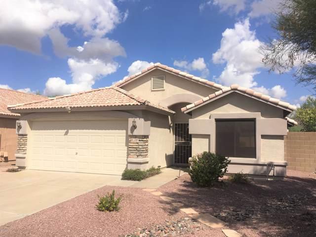 2160 E Creedance Boulevard, Phoenix, AZ 85024 (MLS #5976757) :: Revelation Real Estate