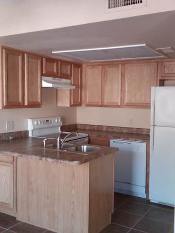 10411 N 11TH Avenue #37, Phoenix, AZ 85021 (MLS #5976864) :: Santizo Realty Group