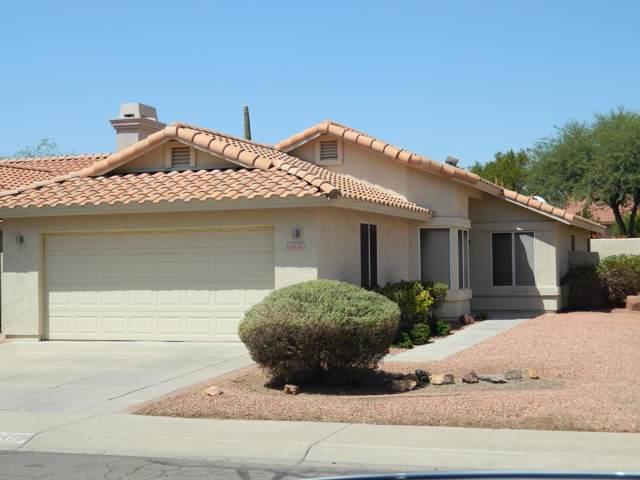 14470 S 43RD Street, Phoenix, AZ 85044 (MLS #5976871) :: Occasio Realty