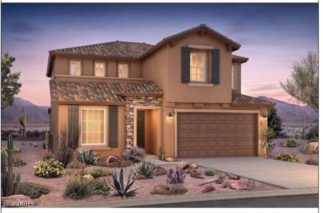 26995 N 71st Drive, Peoria, AZ 85383 (MLS #5976929) :: Occasio Realty