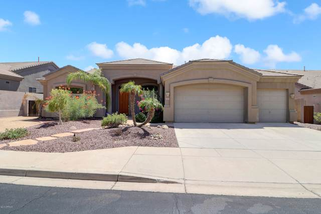 401 W Desert Flower Lane, Phoenix, AZ 85045 (MLS #5976994) :: Yost Realty Group at RE/MAX Casa Grande
