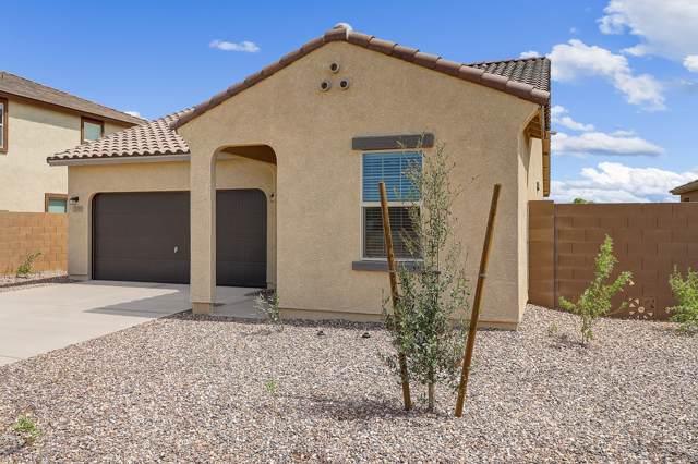 308 S Verdad Lane, Casa Grande, AZ 85194 (MLS #5977097) :: The Pete Dijkstra Team
