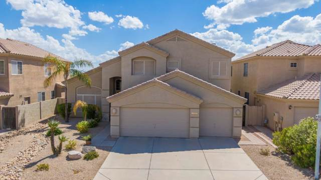 1637 W South Fork Drive, Phoenix, AZ 85045 (MLS #5977249) :: Yost Realty Group at RE/MAX Casa Grande