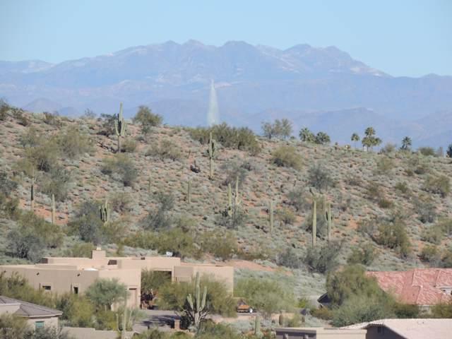 16231 E Powderhorn Drive, Fountain Hills, AZ 85268 (MLS #5977395) :: Team Wilson Real Estate