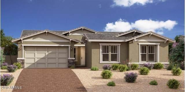 10261 E Seismic Avenue, Mesa, AZ 85212 (MLS #5977409) :: Brett Tanner Home Selling Team