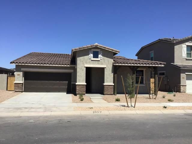 23104 E Camina Buena Vista, Queen Creek, AZ 85142 (MLS #5977524) :: Riddle Realty Group - Keller Williams Arizona Realty