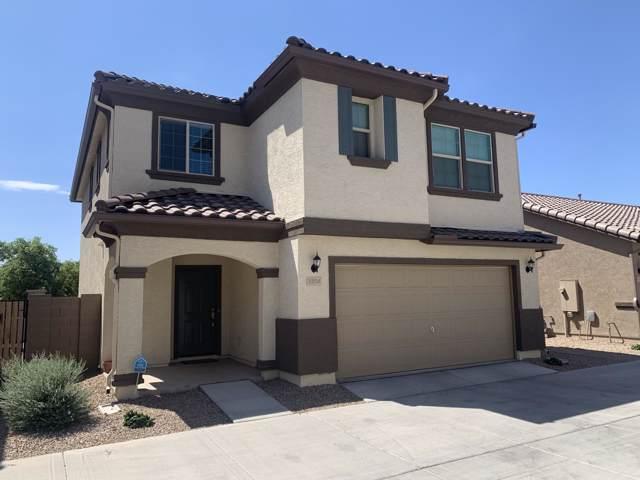 1254 N 165TH Avenue, Goodyear, AZ 85338 (MLS #5977544) :: Occasio Realty