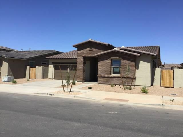 23072 E Camina Buena Vista, Queen Creek, AZ 85142 (MLS #5977605) :: Riddle Realty Group - Keller Williams Arizona Realty