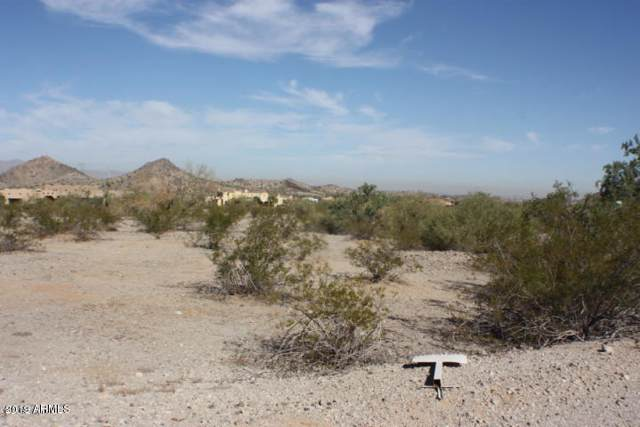 9604 S Krista Drive, Goodyear, AZ 85338 (MLS #5977635) :: Nate Martinez Team