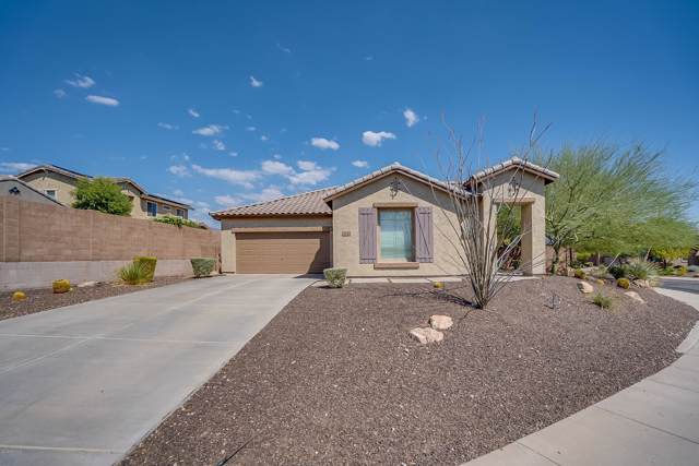 31081 N 131ST Drive, Peoria, AZ 85383 (MLS #5977680) :: Yost Realty Group at RE/MAX Casa Grande