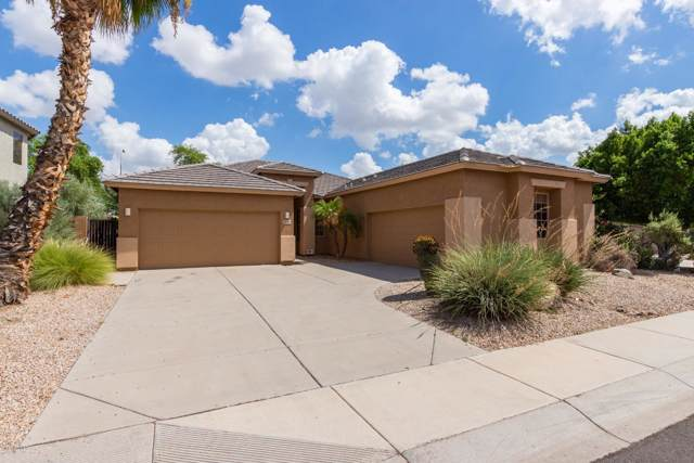 3681 S Pleasant Place, Chandler, AZ 85248 (MLS #5977681) :: The W Group