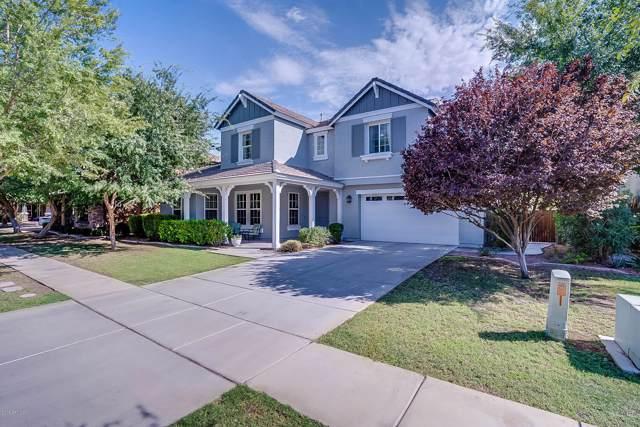 3747 E Marlene Drive, Gilbert, AZ 85296 (MLS #5977865) :: Revelation Real Estate