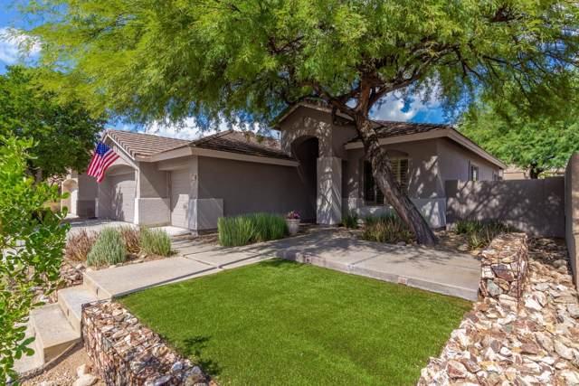 7758 E Buteo Drive, Scottsdale, AZ 85255 (MLS #5977879) :: Kepple Real Estate Group