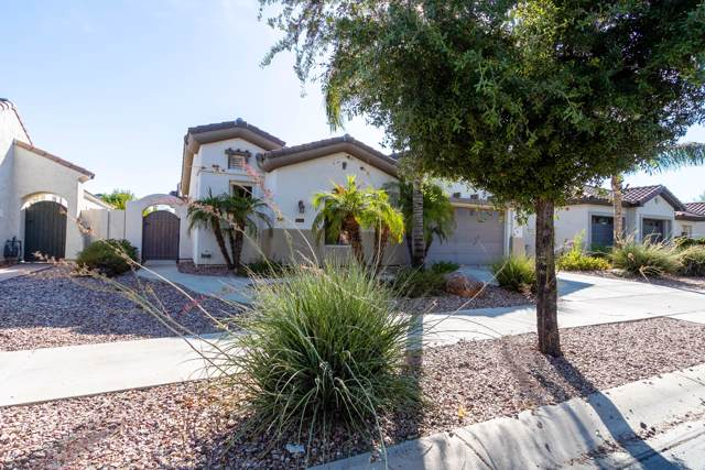 837 W Sycamore Court, Litchfield Park, AZ 85340 (MLS #5977904) :: Openshaw Real Estate Group in partnership with The Jesse Herfel Real Estate Group