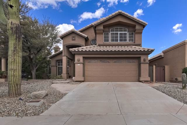 1434 E Nighthawk Way, Phoenix, AZ 85048 (MLS #5978060) :: Openshaw Real Estate Group in partnership with The Jesse Herfel Real Estate Group