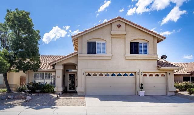 831 E Wagoner Road, Phoenix, AZ 85022 (MLS #5978067) :: Brett Tanner Home Selling Team