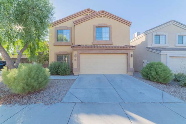 5858 E Desert Spoon Lane, Florence, AZ 85132 (MLS #5978096) :: Revelation Real Estate
