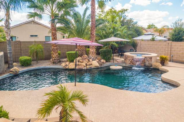 2589 W Prospector Way, Queen Creek, AZ 85142 (MLS #5978146) :: Team Wilson Real Estate