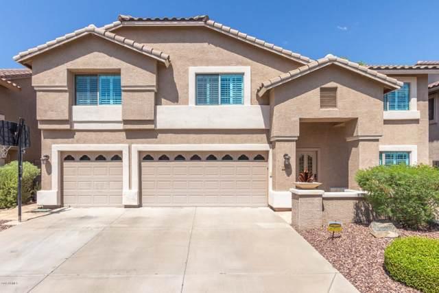 2036 E Avenida Del Sol, Phoenix, AZ 85024 (MLS #5978252) :: Revelation Real Estate