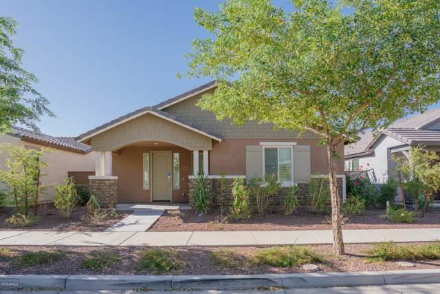 20735 W Legend Trail, Buckeye, AZ 85396 (MLS #5978269) :: The Property Partners at eXp Realty