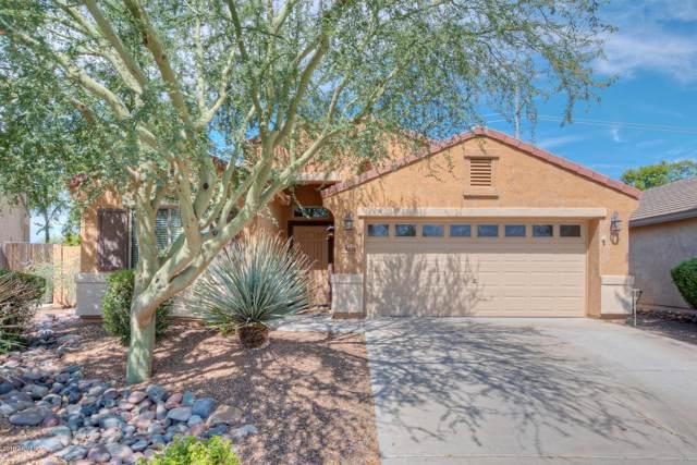 24204 N 27TH Place, Phoenix, AZ 85024 (MLS #5978302) :: Revelation Real Estate