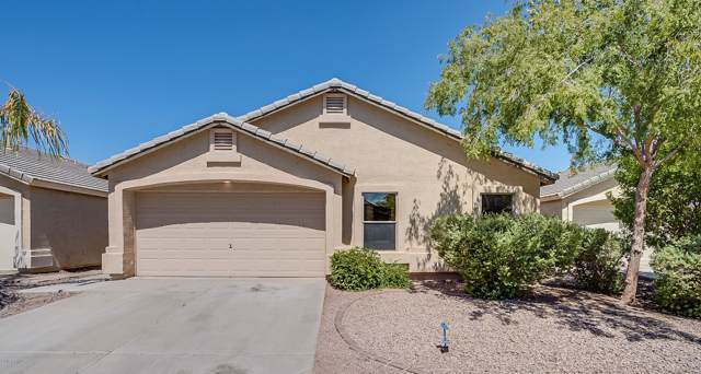 42380 W Anne Lane, Maricopa, AZ 85138 (MLS #5978340) :: Team Wilson Real Estate